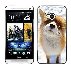 Qstar Arte & diseño plástico duro Fundas Cover Cubre Hard Case Cover para HTC One M7 ( Cute Arctic Snow Fox Orange Goofy Animal)