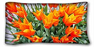 Custom Characteristic Nature Custom Zippered Pillow Case 20x36 inches(one sides) from Surprise you suitable for Queen-bed