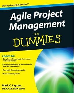 Amazon.com: Project Management For Dummies (9781118497234 ...