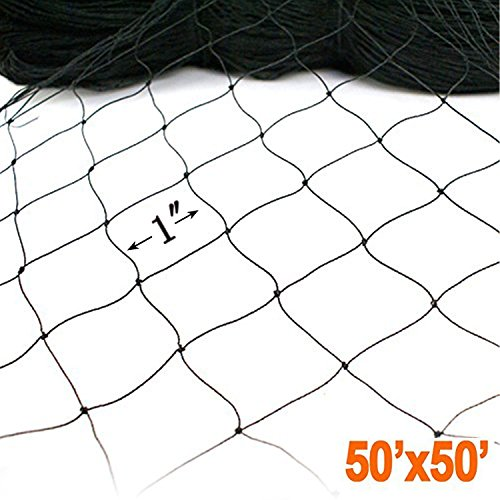 ZL 50' X 50' Net Netting for Bird Poultry Aviary Game Pens New 1