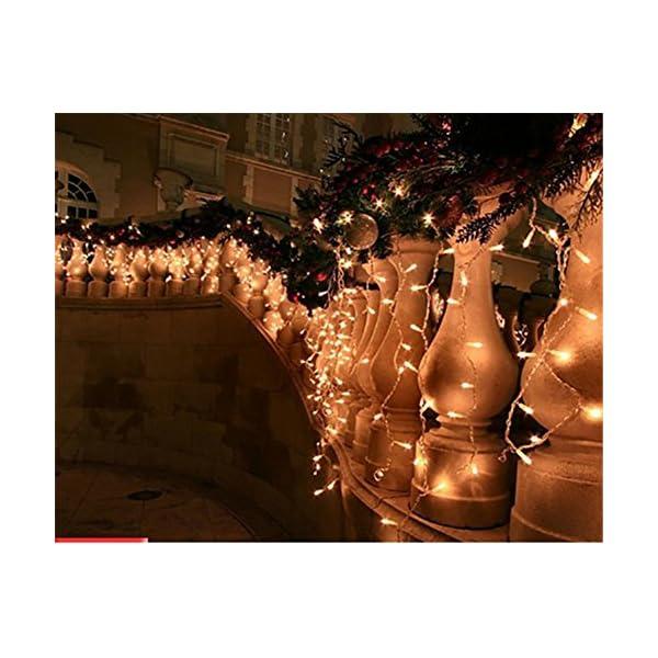 LED Tenda Luminosa, Catena Luminosa, Luci cascata, Luci per Tende, 216 LEDs 5M Natale Luci Stringa Bianco Caldo 8 Modalità Impermeabili IP44, per Natale finestra, porta, patio, giardino, feste 4 spesavip