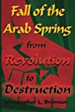 Book Cover for Fall of the Arab Spring: From Revolution to Destruction