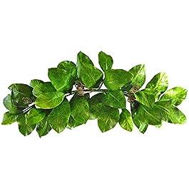 36″ Magnolia Leaf Swag
