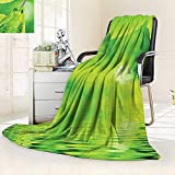 vanfan Heavy Blanket Winter Leaves in The Water Spa Open Your Chakra Nature Meditation Ecological Monochrome,Silky Soft,Anti-Static,2 Ply Thick Blanket. (50''x30'')