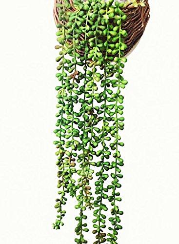 Ahvoler Artificial Succulent Plants, String of Pearls, 28