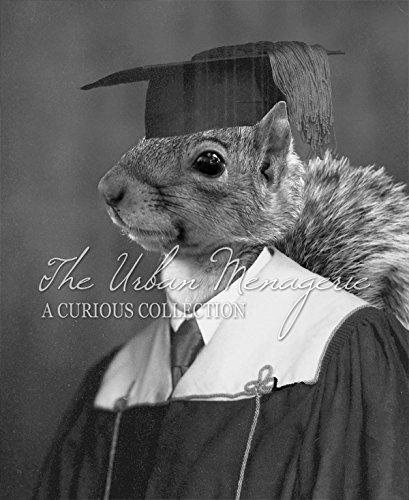 [Anthropomorphic Portrait, Squirrel Graduate Art Print, Multiple Sizes Available, Unframed] (Inanimate Object Costume)