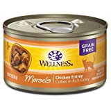 Wellness Natural Pet Food Cat Foods - Best Reviews Guide
