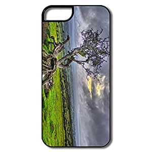 Great Twisted Tree Plastic Case For IPhone 5/5s