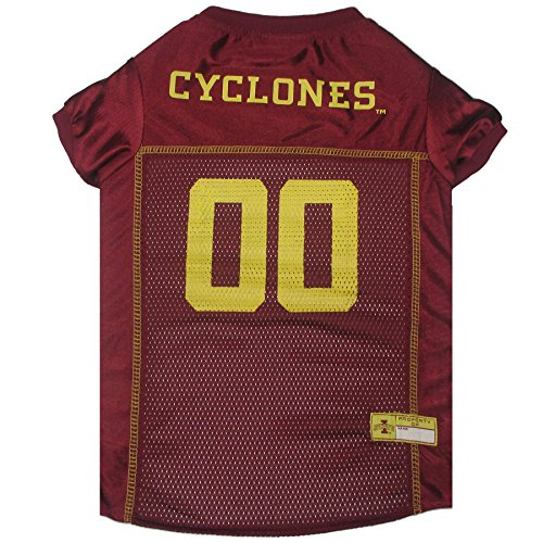 Iowa State Cheerleader Costume (Pets First Collegiate Iowa State Cyclones Dog Mesh Jersey, Large)
