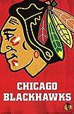 Chicago Blackhawks Logo Poster 22 x 34in