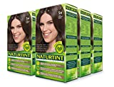 Permanent Hair Color - 5N, Light Chestnut Brown, 5.28 oz (6 Pack)