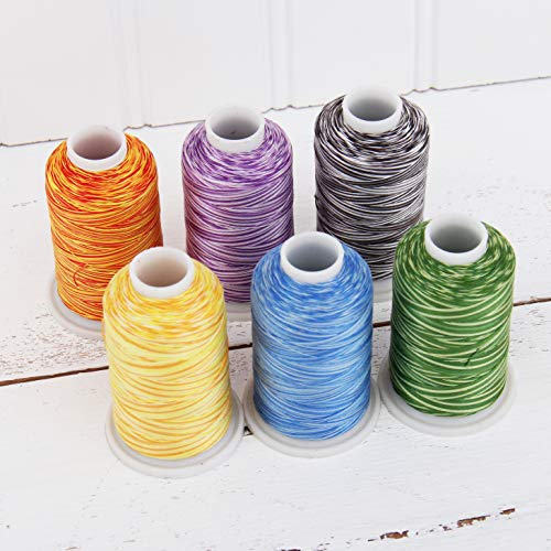 Threadart 100% Cotton Variegated Thread Set | 6 Cones Rainbow Colors | 600M (660 Yards) Cones | For Quilting & Sewing 40/3 Weight | Long Staple & Low Lint | Over 20 Other Sets Available ()