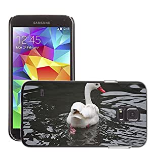 Hot Style Cell Phone PC Hard Case Cover // M00133405 Swan White Romance Nature Lake Love // Samsung Galaxy S5 S V SV i9600 (Not Fits S5 ACTIVE)