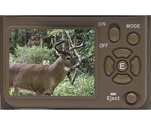 Browning Recon Force Advantage 20MP Trail Camera (1080P Video) Bundled with 16GB SD Card and Focus USB Reader (3 Items)