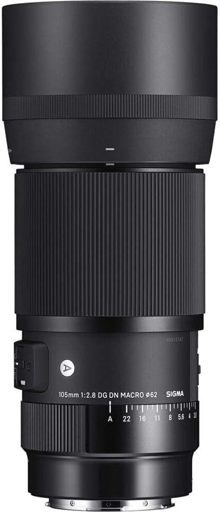 Sigma 105 2 8 Dg Dn Macro Art Für Sony E Kamera