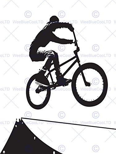 PAINTING SPORT BMX BIKE BICYCLE JUMP AIR RAMP BLACK WHITE 30x40 cms POSTER PRINT - Time Us International Delivery Mail Priority