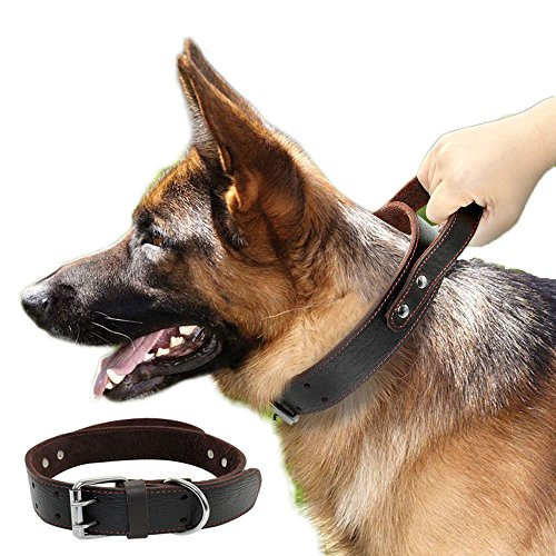 PET ARTIST Genuine Leather Dog Collar for Walking & Training Heavy Duty Dog Collar with Handle for Medium & Large Dogs