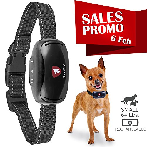 Impact Harness (Small Rechargeable Dog Bark Collar For Tiny To Medium Dogs by GoodBoy Waterproof And Vibrating Anti Bark Training Device That Is Smallest & Most Safe On Amazon - No Shock No Spiky Prongs! ( 6+ lbs ))
