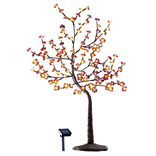 Autumn Cherry Tree (Burgundy Cherry Blossom Solar Light Tree)