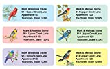 Birds Assorted Set of 215 Sheeted Address Labels
