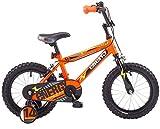 Concept Energy 14' Boys Mountain Bike