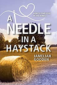 A Needle in a Haystack: How to Find Love in the Rubble