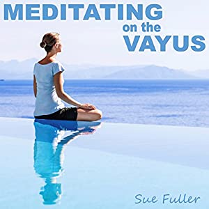 Meditating on the Vayus Speech