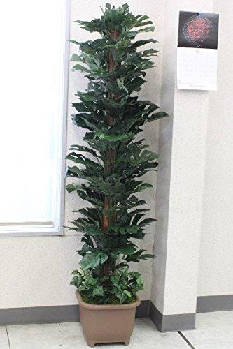 山久 シルクフラワー の ヘゴ付 スプリットフィロー 180 TW914 603054 CT触媒加工 snb 観葉植物 造花 B01GYGWAII
