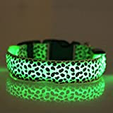 Evtech(tm) Leopard Print Night Safety Lead Collar Dog Cat Pet Adjustable Collar with Flash Light-up Green - S