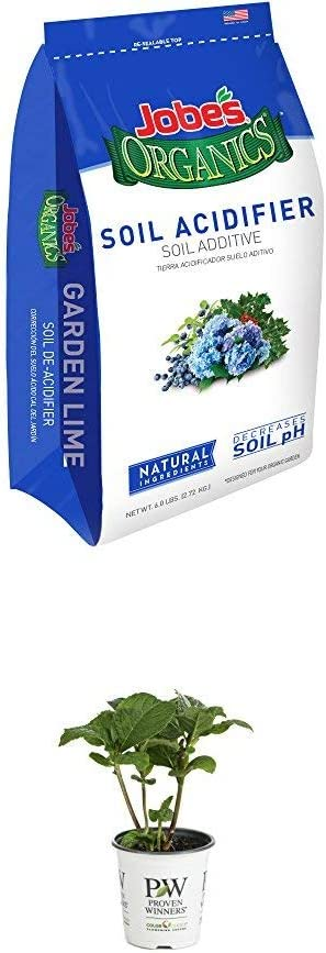Jobe's Organics Soil Acidifier for Hollies, Blueberries and Other Acid Loving Plants, Turns Hydrangeas Blue, 6 pound bag and Let's Dance Rhythmic Blue Reblooming Hydrangea (Macrophylla) Live Shrub, Blue or Pink Flowers, 4.5 in. Quart