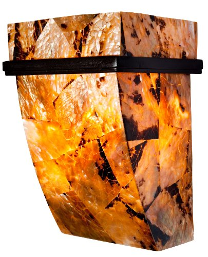 Varaluz 178K01B Big 1-Light Wall Sconce - Brilliant Mojave Finish with Chocolate Reclaimed Shell