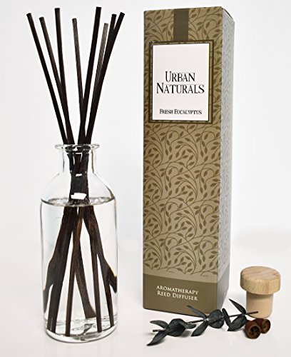 Fresh Eucalyptus Essential Oil Reed Diffuser Set by Urban Naturals | On Sale! | #1 Gift Idea for Busy, Stressed out Moms