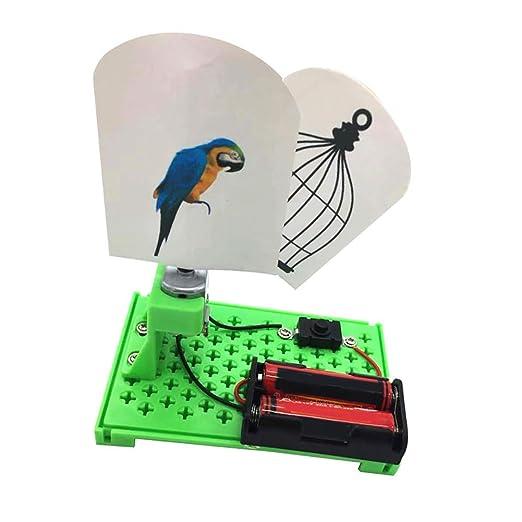 fiejns-zjy Brid eléctrico para Bricolaje en Jaula de impresión de ...