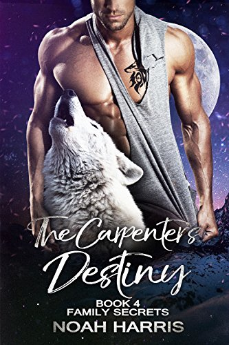 The Carpenter's Destiny (Family Secrets Book 4)