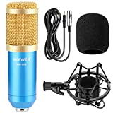 Neewer® NW-800 Professional Studio Broadcasting & Recording Microphone Set Including (1)NW-800 Professional Condenser Microphone + (1)Microphone Shock Mount + (1)Ball-type Anti-wind Foam Cap + (1)Microphone Power Cable (Blue)