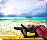 Liili Turtle Beach Mouse Pads - Best Reviews Guide