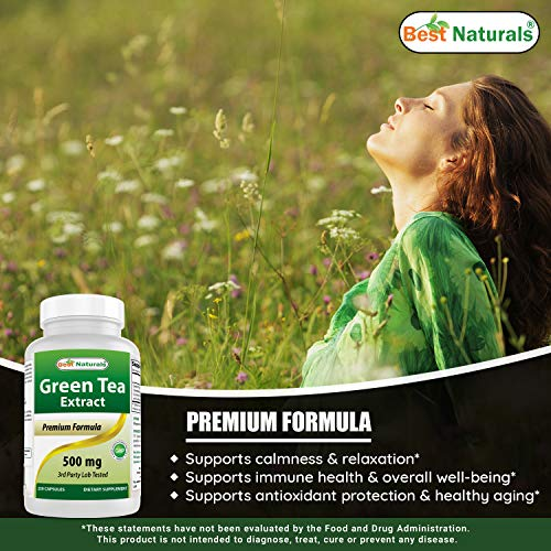 Best Naturals Green Tea Extract 500 mg 250 Capsules