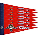Rico NHL Islanders 8 Pc Mini Pennant Pack Sports Fan Home Decor, Multicolor, One Size