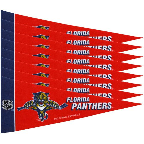 Rico NHL Islanders 8 Pc Mini Pennant Pack Sports Fan Home Decor, Multicolor, One Size by Rico