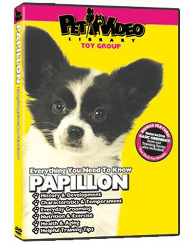papillon-dvd-includes-dog-puppy-training-video
