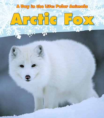 Arctic Fox (A Day in the Life: Polar Animals)