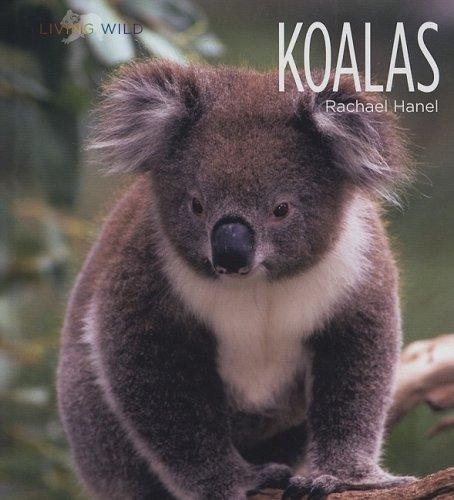 Download Koalas (Living Wild) pdf