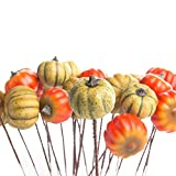 Factory Direct Craft Group of 24 Small Decorative Artificial Autumn Assorted Pumpkin Picks for Holiday and Home Decor and Crafting