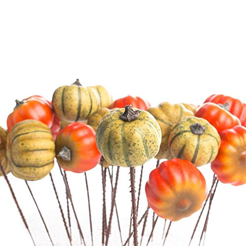 Factory Direct Craft Group of 24 Small Decorative Artificial Autumn Assorted Pumpkin Picks for Holiday and Home Decor and Crafting by Factory Direct Craft