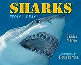 Sharks, Sandra Markle, 1590785134