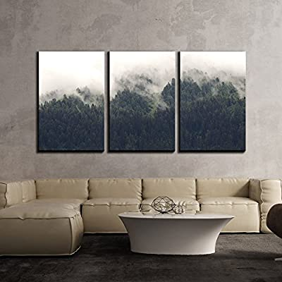3 Piece Canvas Wall Art - Landscape of Trees Forest in Mist - Modern Home Art Stretched and Framed Ready to Hang - 24