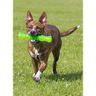 Hyper Pet Dura-Squeaks Stick Dog Toy, Large