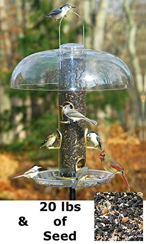 Antique Brass Seed Tube Feeders (Aspects Big Tube Wild Bird Feeder w/ Seed, Dome, and Tray)