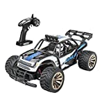 Distianert Electric RC Car Offroad Remote Control Car RTR RC Buggy RC Monster Truck 1:16 2WD 2.4Ghz High Speed with Rechargeable Battery