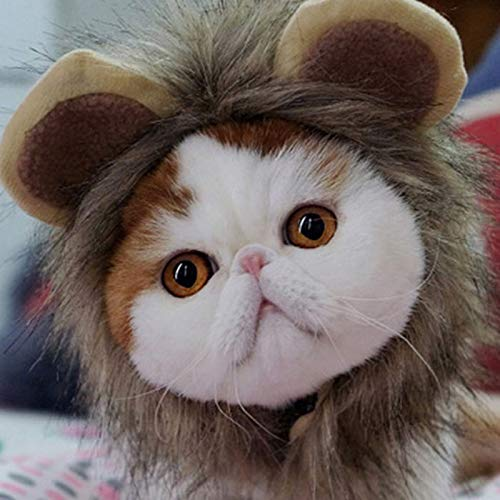 HDMY Lion Mane Pet Costume Lion Wig for Dog Cat, Pet Dress up with Ears for Halloween Party